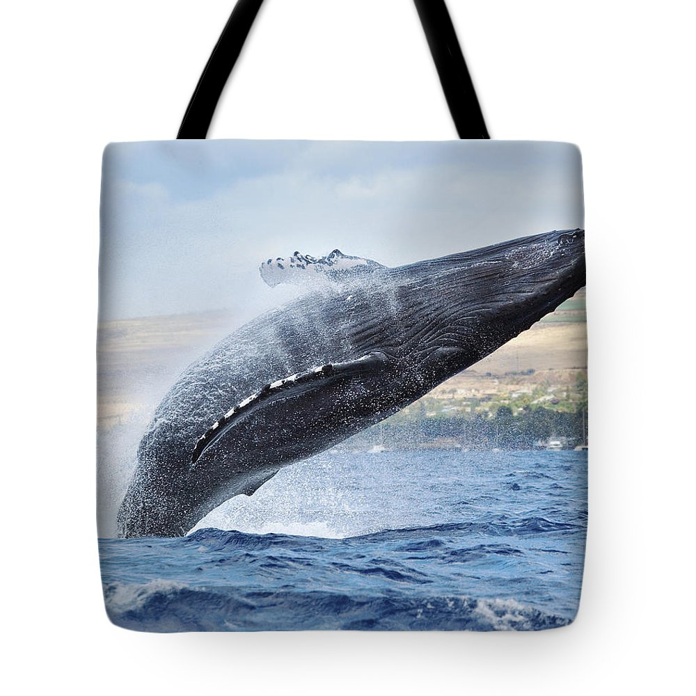 Above Tote Bag featuring the photograph Humpback Whale by M Swiet Productions