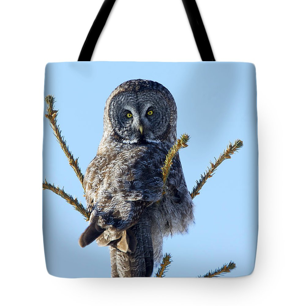 Doug Lloyd Tote Bag featuring the photograph Hundred Mile Stare by Doug Lloyd