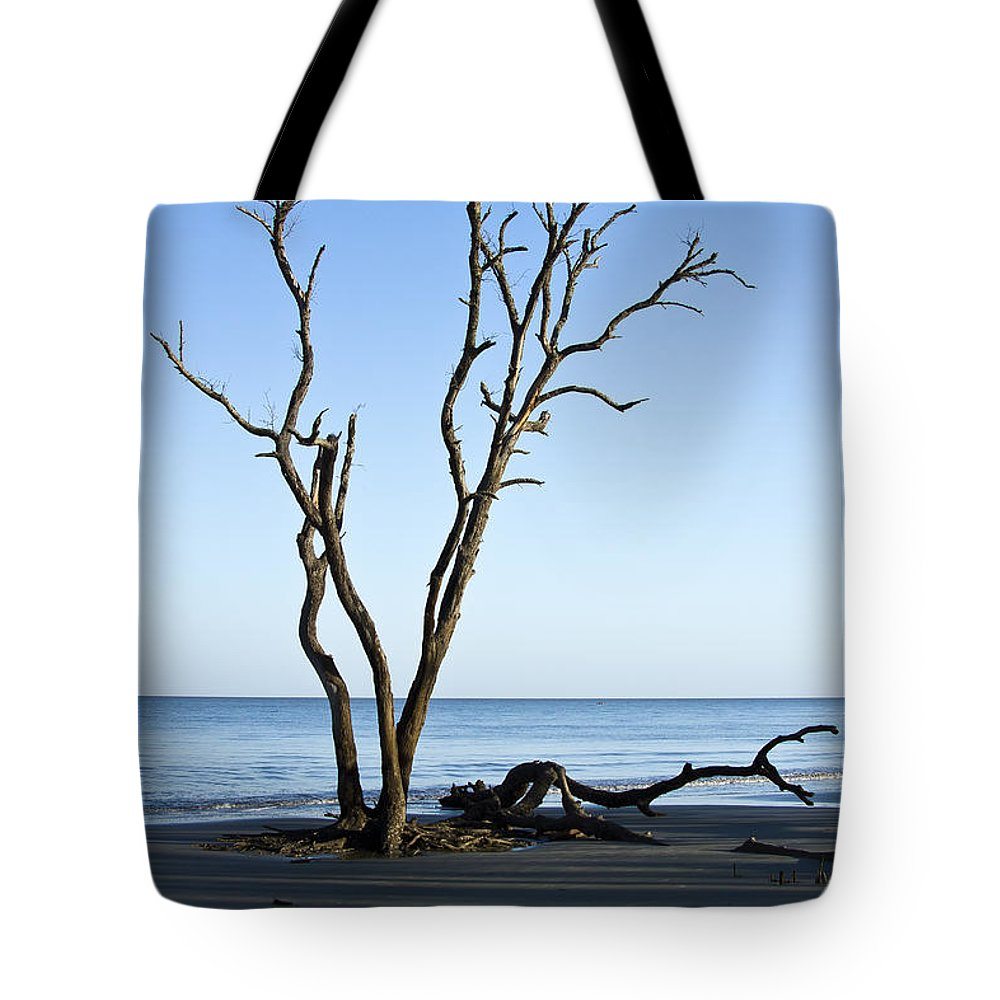 Hunting Island Tote Bag featuring the photograph Hunting Island Graveyard by Sharon M Connolly