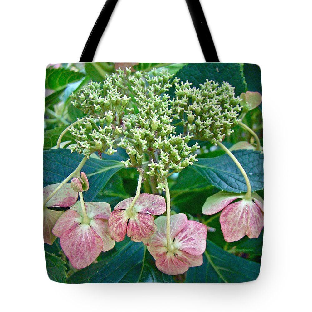 Hydrangea Tote Bag featuring the photograph Hydrangea With A New Look by Mother Nature