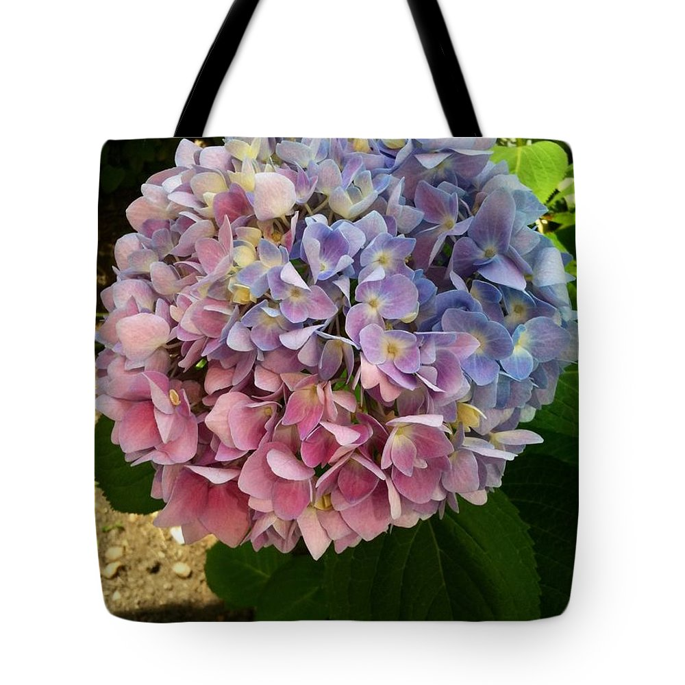 Hydrangea Tote Bag featuring the photograph Hydrangeas On Capitol Hill by Lois Ivancin Tavaf