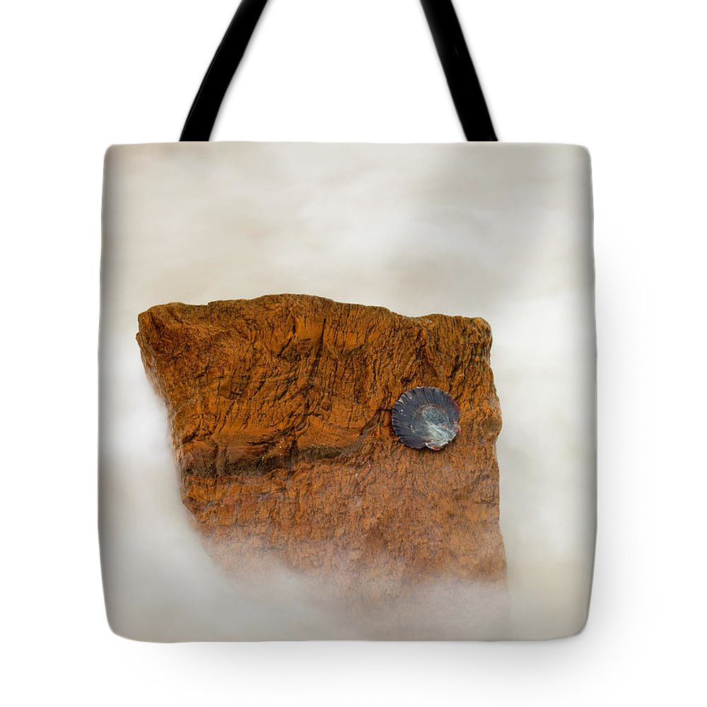 Rocks Tote Bag featuring the photograph I Am A Rock by Mike Dawson
