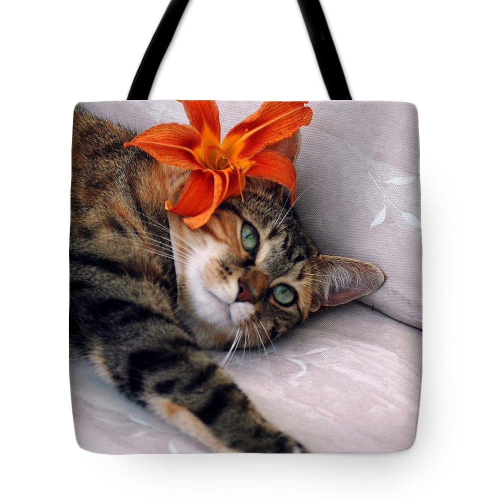 Cat Tote Bag featuring the photograph I Am Tired by Kathleen Struckle