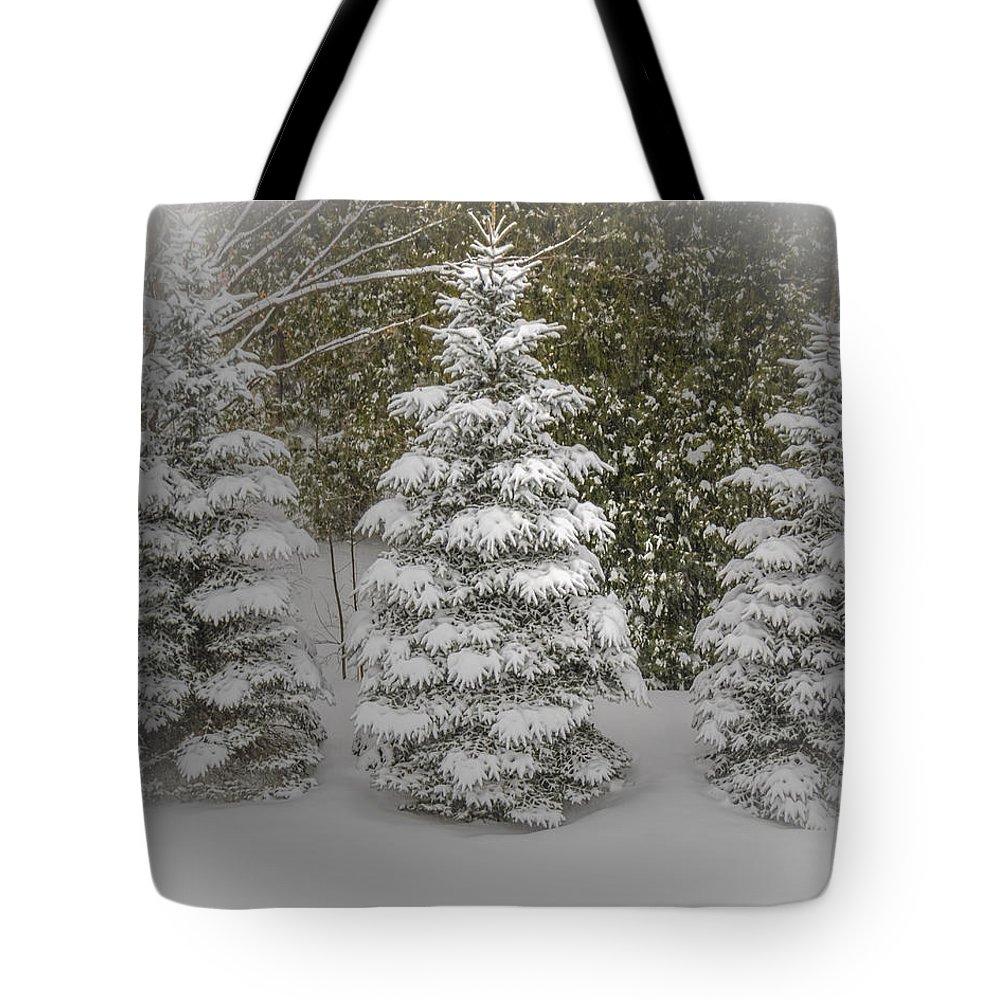 Trees Tote Bag featuring the photograph I Dream Of Trees by LeeAnn McLaneGoetz McLaneGoetzStudioLLCcom
