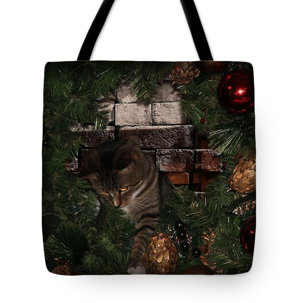 Cat Tote Bag featuring the photograph I Finally Found The Cat - Featured In Harmony And Happiness-visions Of The Night-newbies Groups by Ericamaxine Price