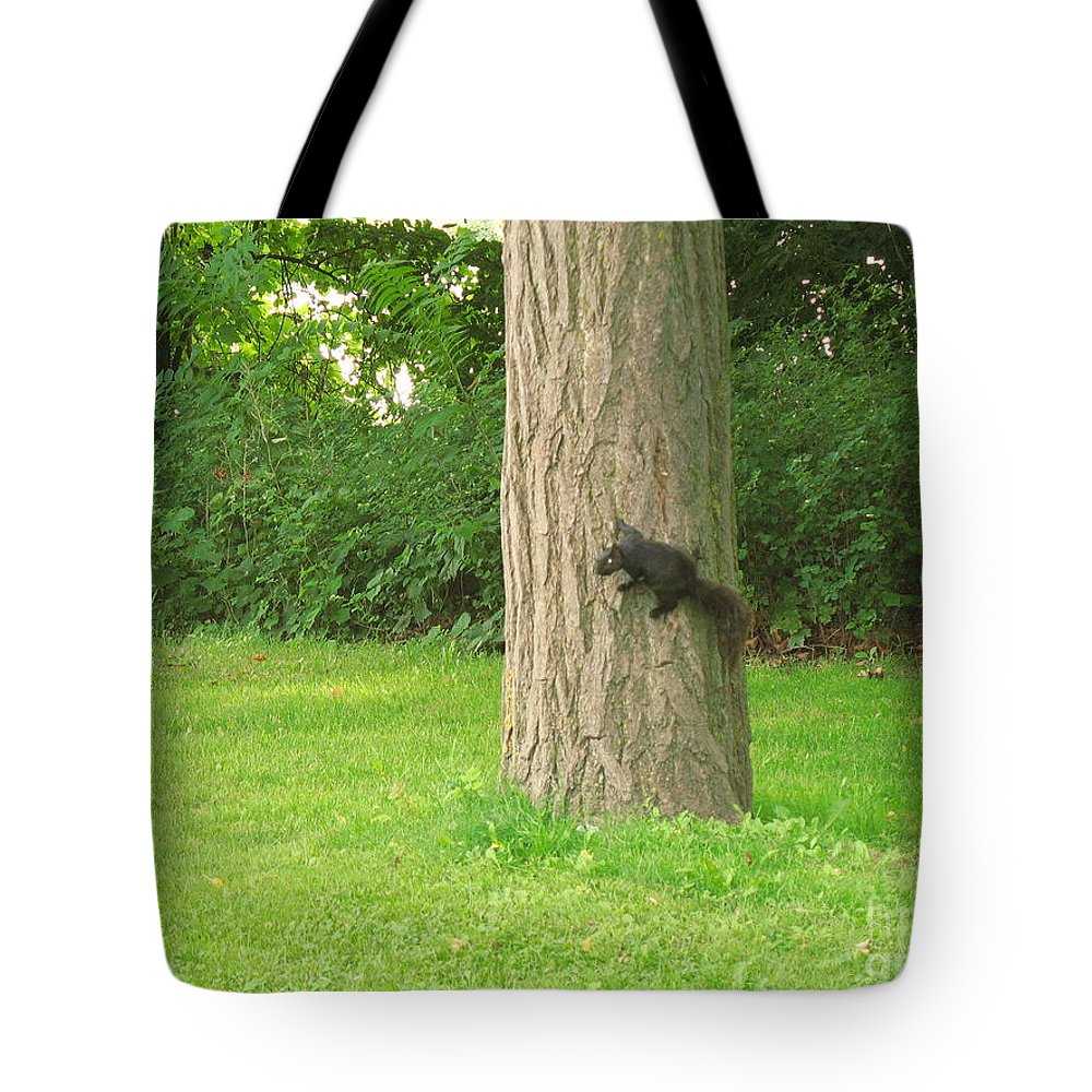 Small Animals Tote Bag featuring the photograph I Got It by Jeffery L Bowers