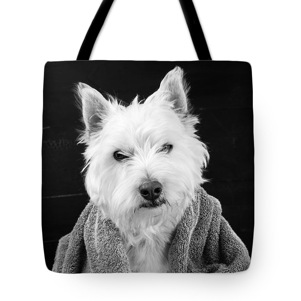 Animal Tote Bag featuring the photograph I Hate Mondays by Edward Fielding