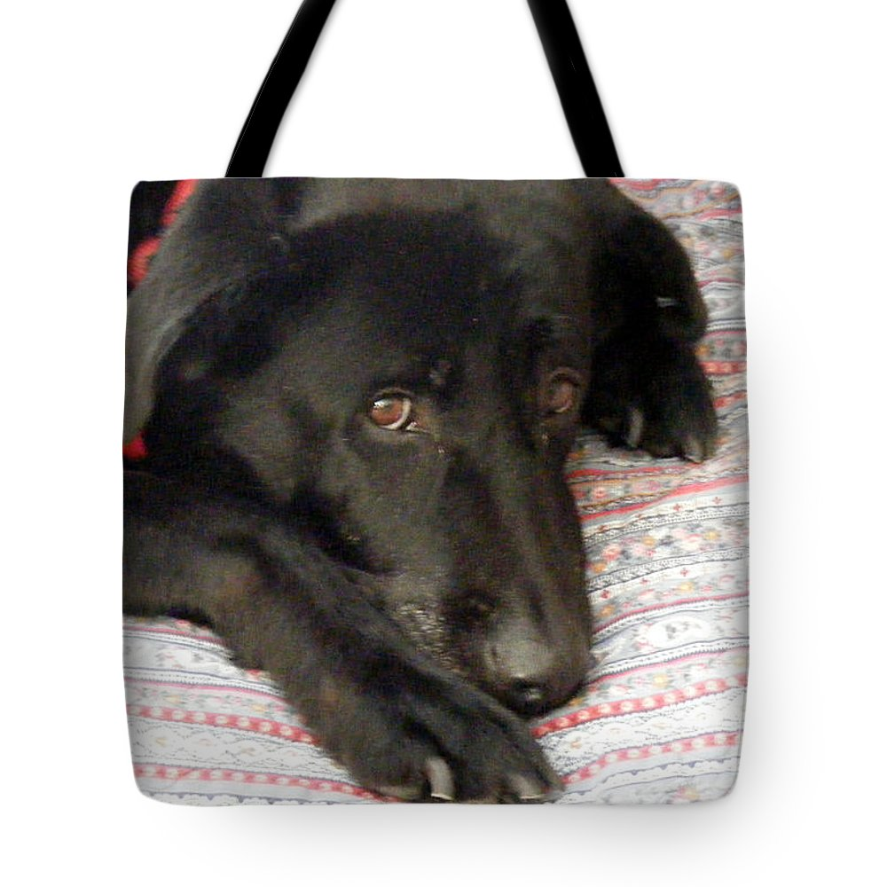 Loved By A Golden Lab Retriever Tote Bag New  MADE IN USA