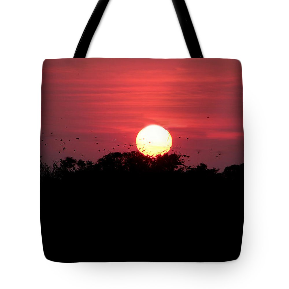 Sunset Tote Bag featuring the photograph I Love Sunsets Three by Ericamaxine Price