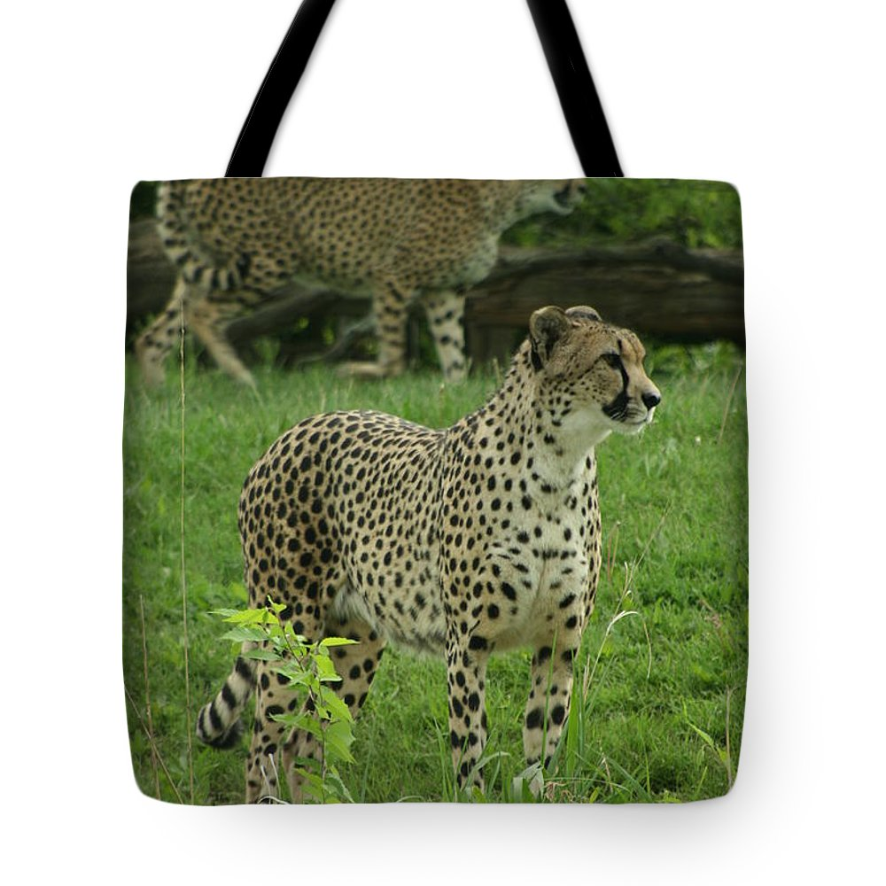 Cheetah Tote Bag featuring the photograph I See Dinner by Crystal Nederman