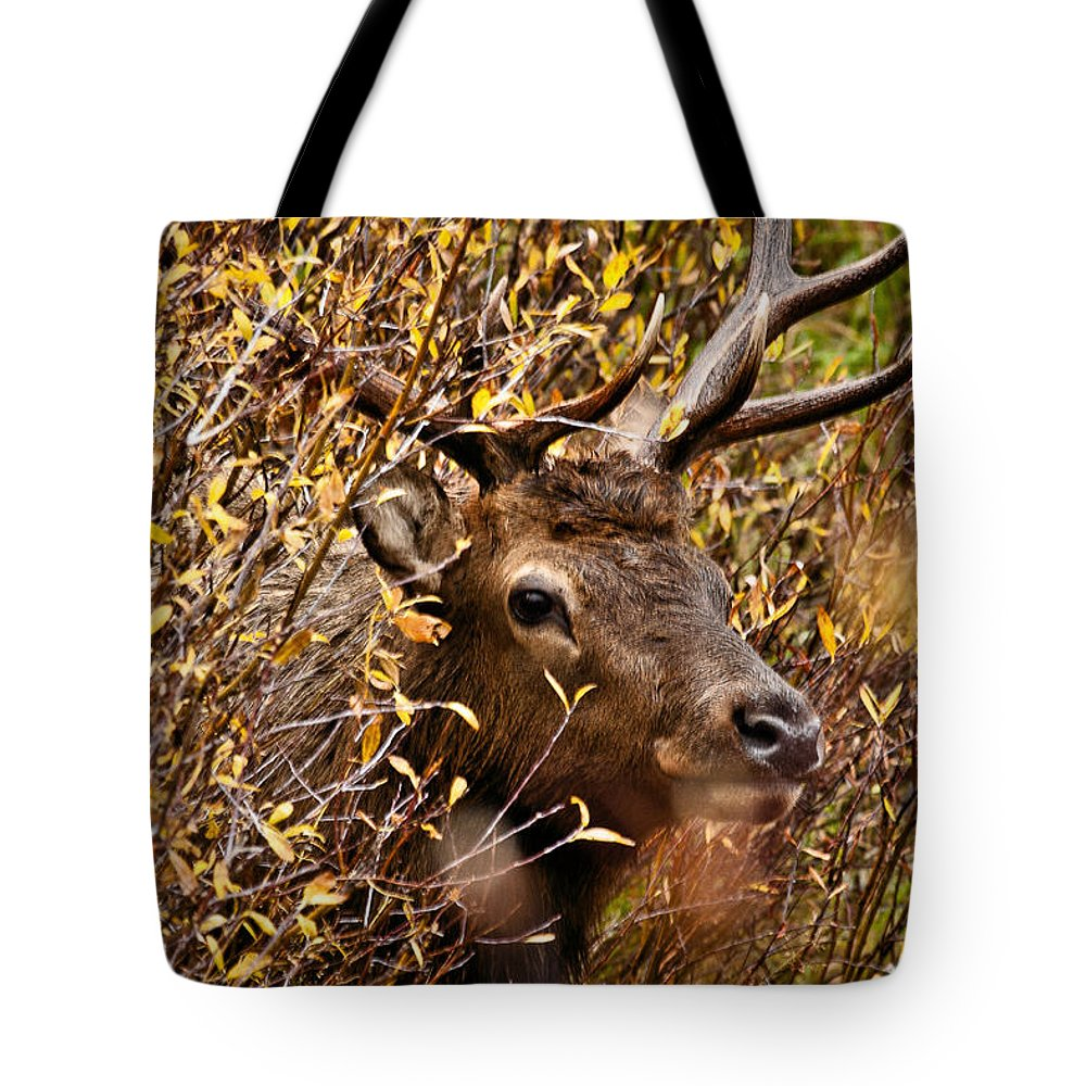 Landscape Tote Bag featuring the photograph I See You by Steven Reed