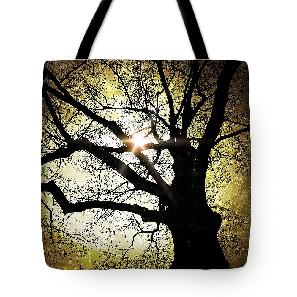 Tree Tote Bag featuring the photograph I Think I Shall Never See A Poem As Lovely As A Tree... by Natasha Marco