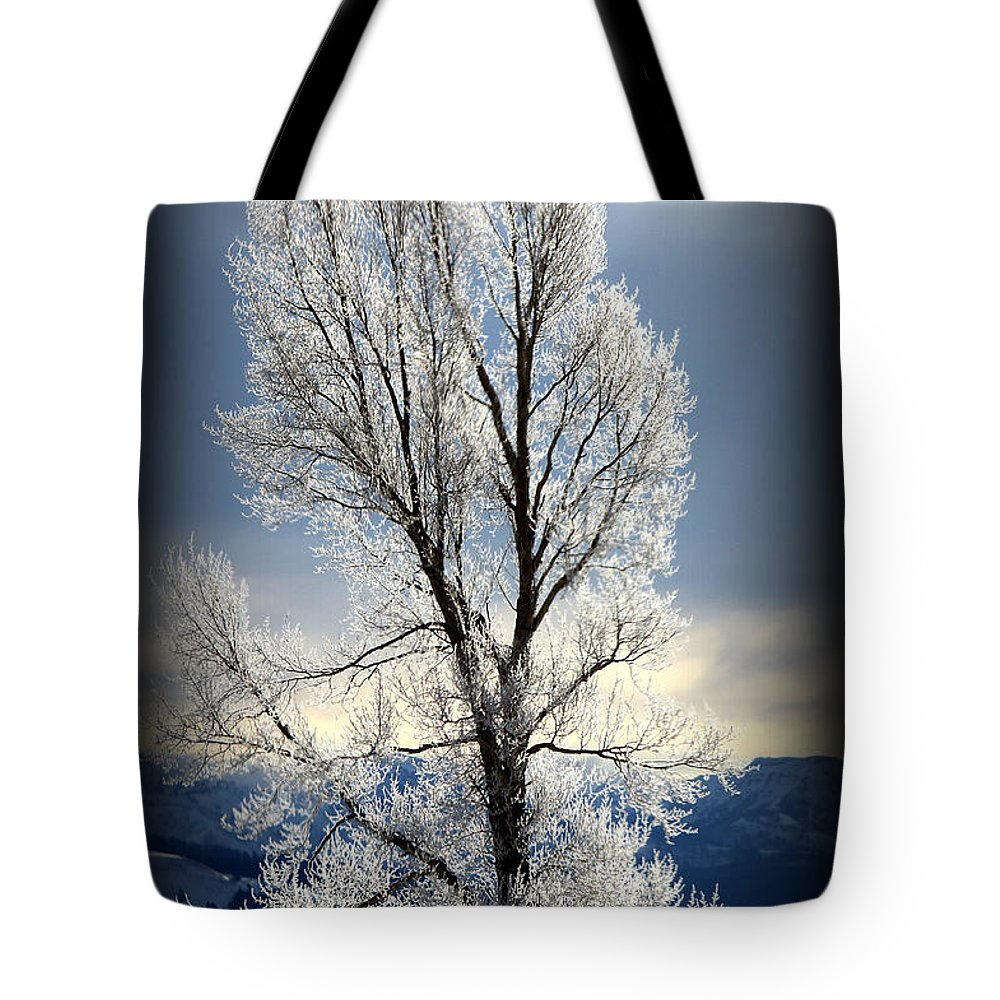 Ice Tree Tote Bag featuring the photograph Ice Glow by C Ray Roth
