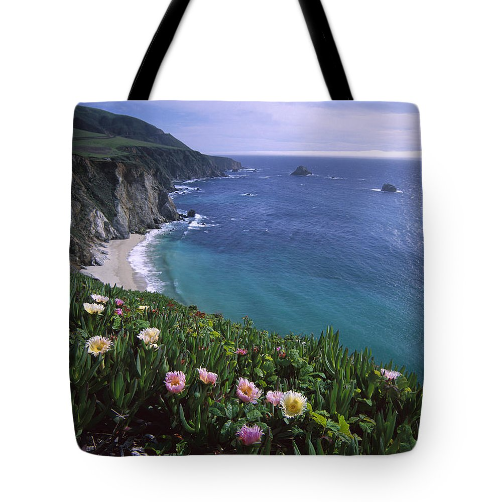 00174725 Tote Bag featuring the photograph Ice Plants On Big Sur Coast by Tim Fitzharris