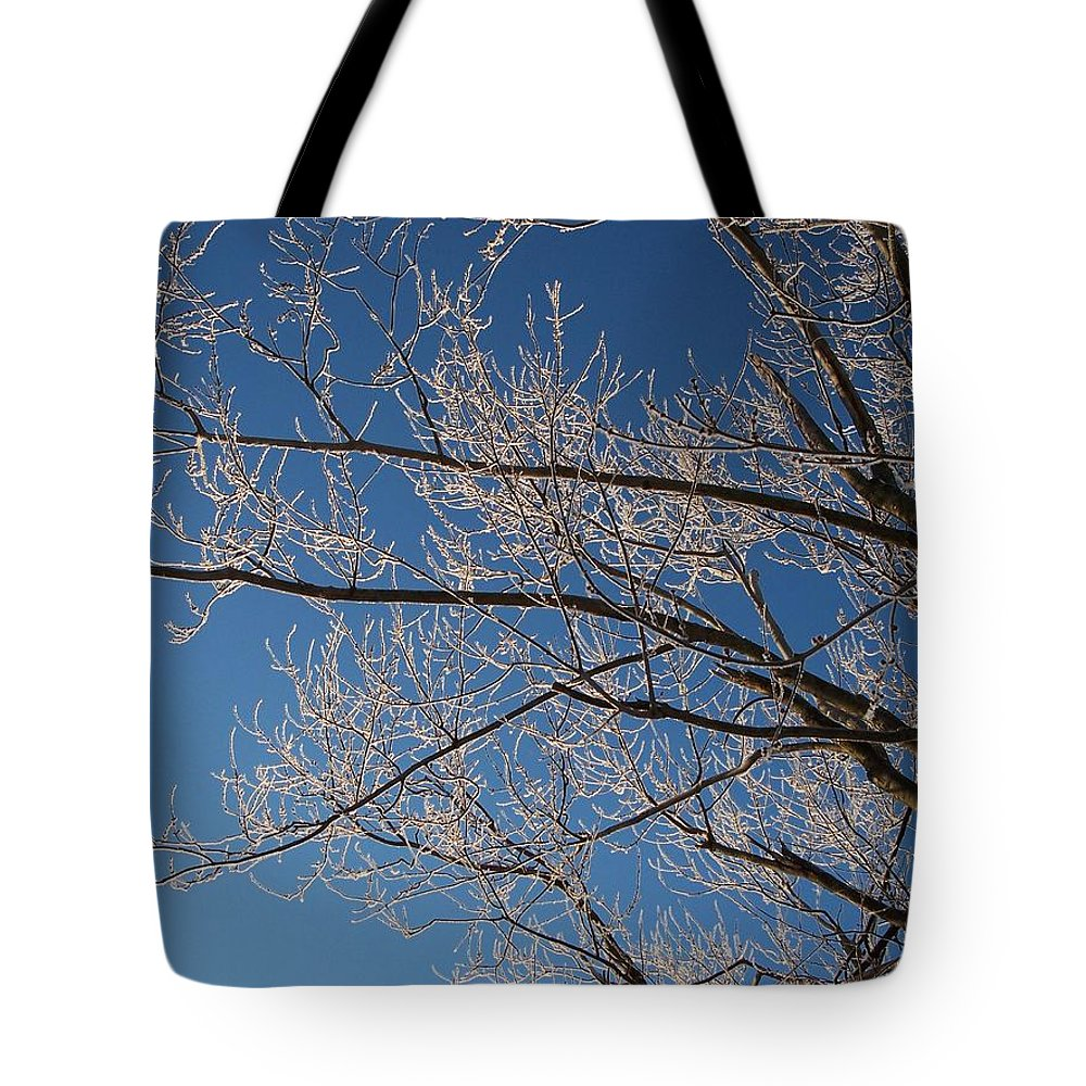 Branches Tote Bag featuring the photograph Ice Storm Branches by Michelle Miron-Rebbe
