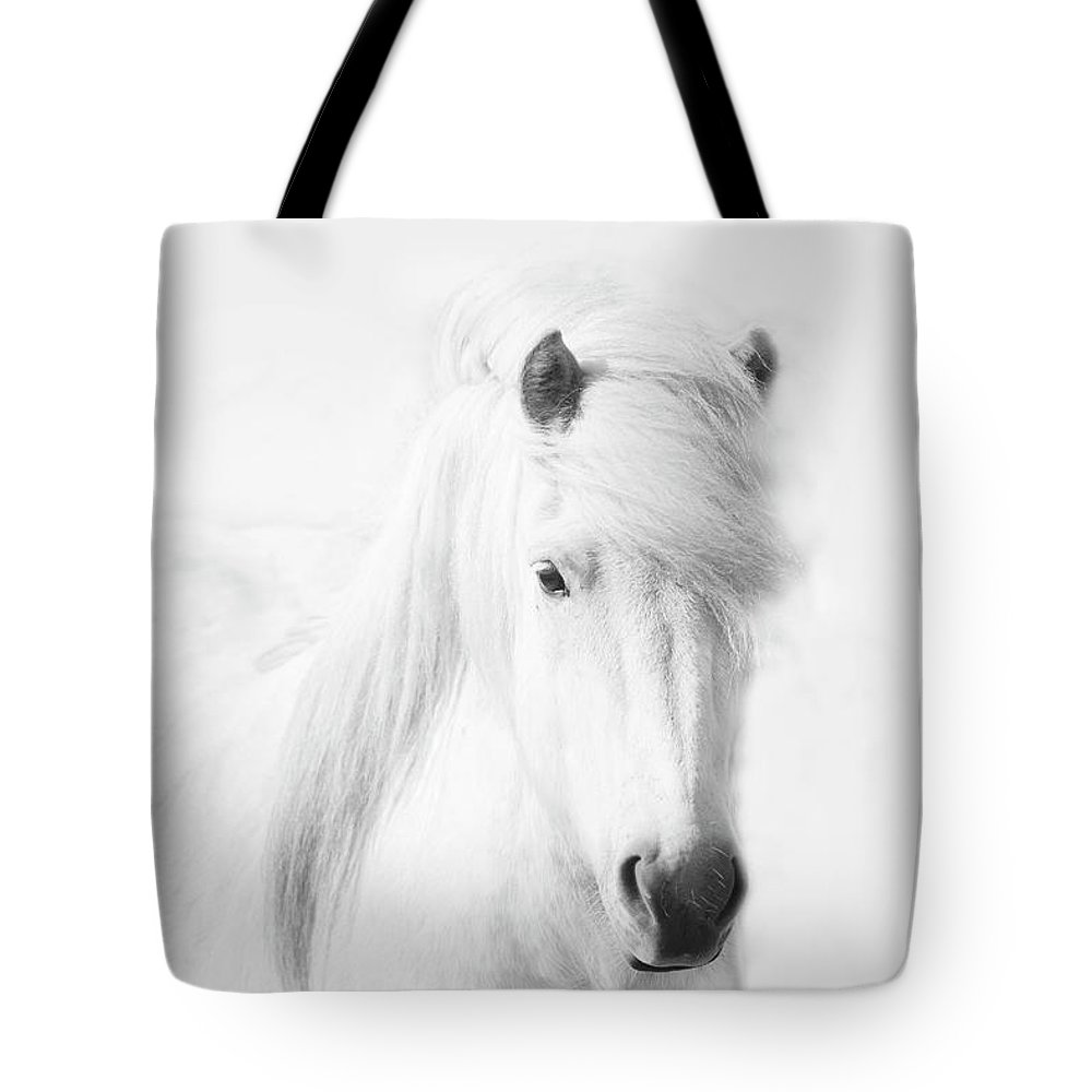 White Background Tote Bag featuring the photograph Icelandic Pony In White by Grant Faint