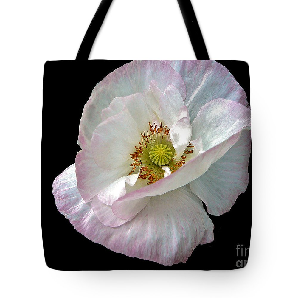 Icelandic Poppy On Black Tote Bag featuring the photograph Icelandic Poppy Version Two by Byron Varvarigos
