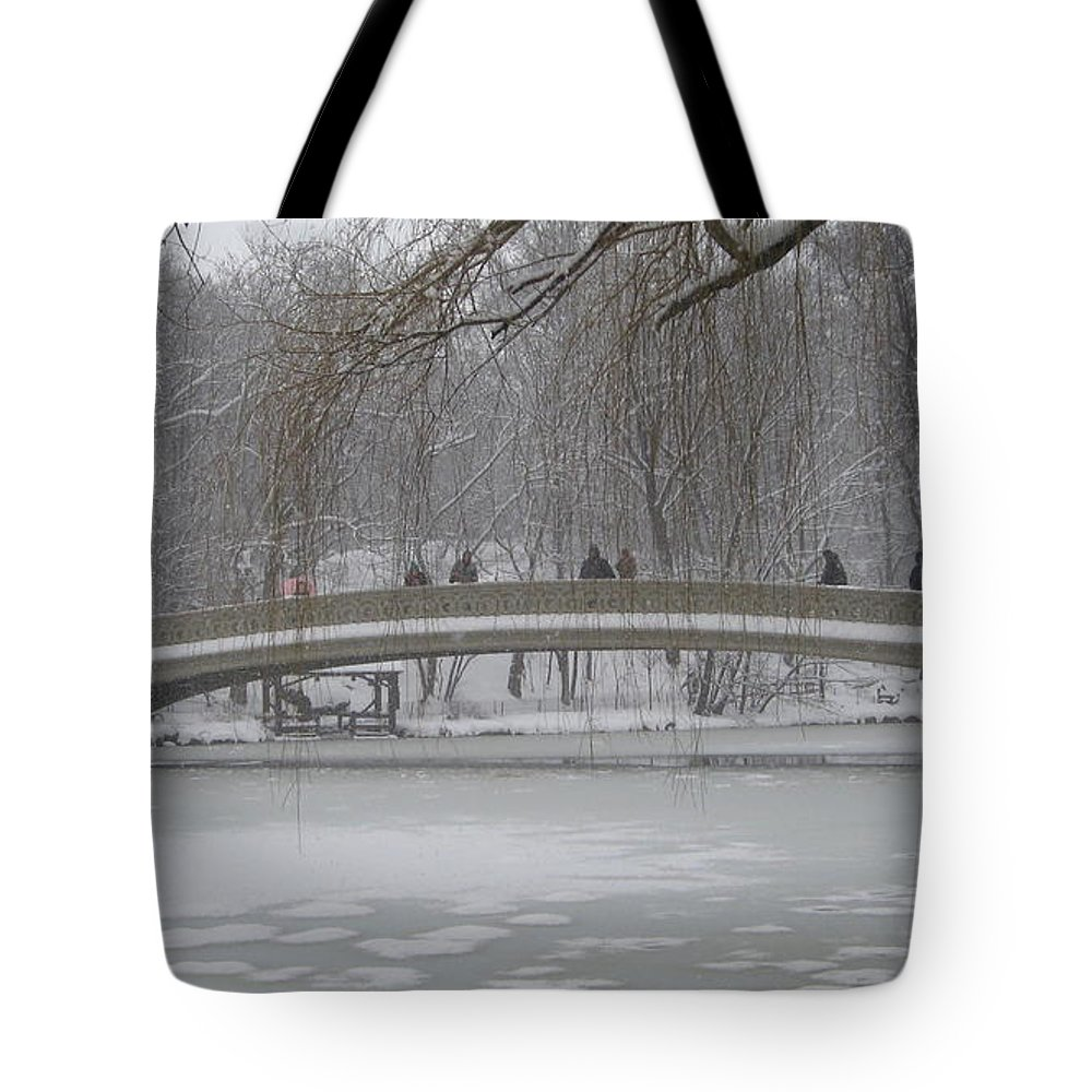 Central Park Tote Bag featuring the photograph Icy Central Park by Catie Canetti