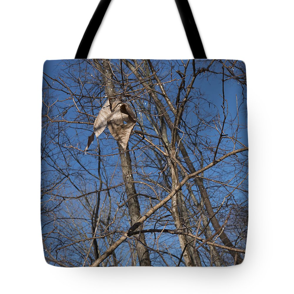 Sunset Tote Bag featuring the photograph Icy Morning by Anthony Hughes