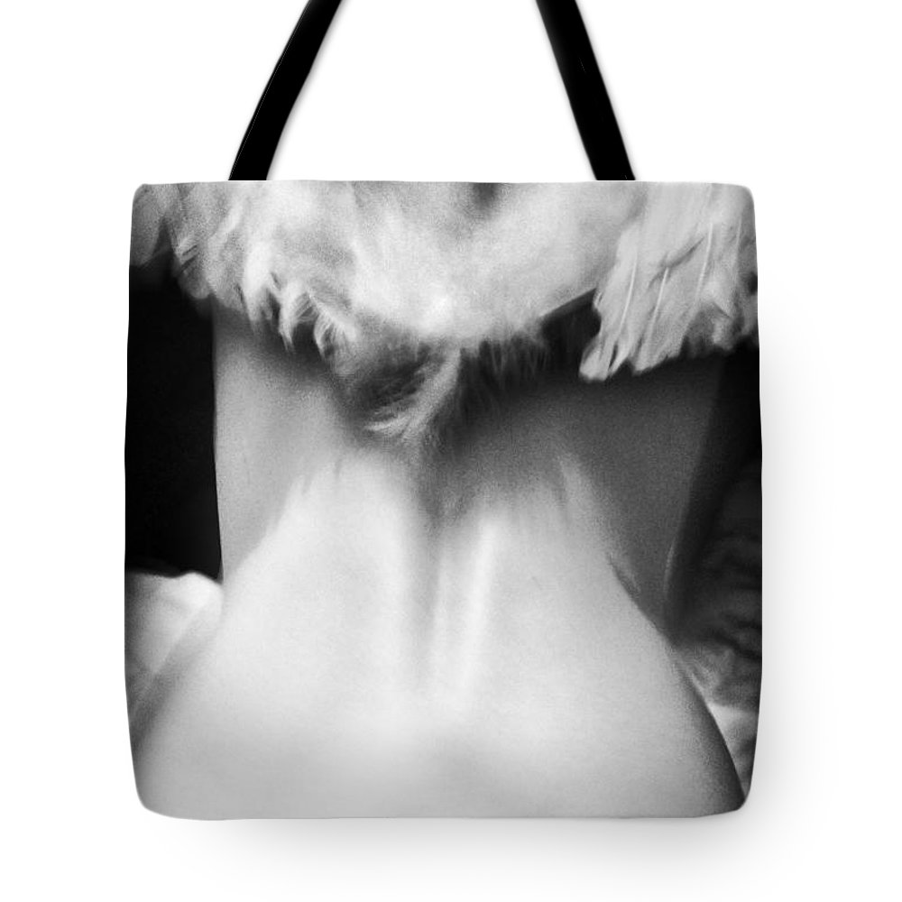 Wing Back Photographs Tote Bags