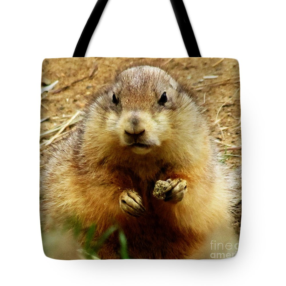 Ron Tackett Tote Bag featuring the photograph I'll Get You My Pretty by Ron Tackett