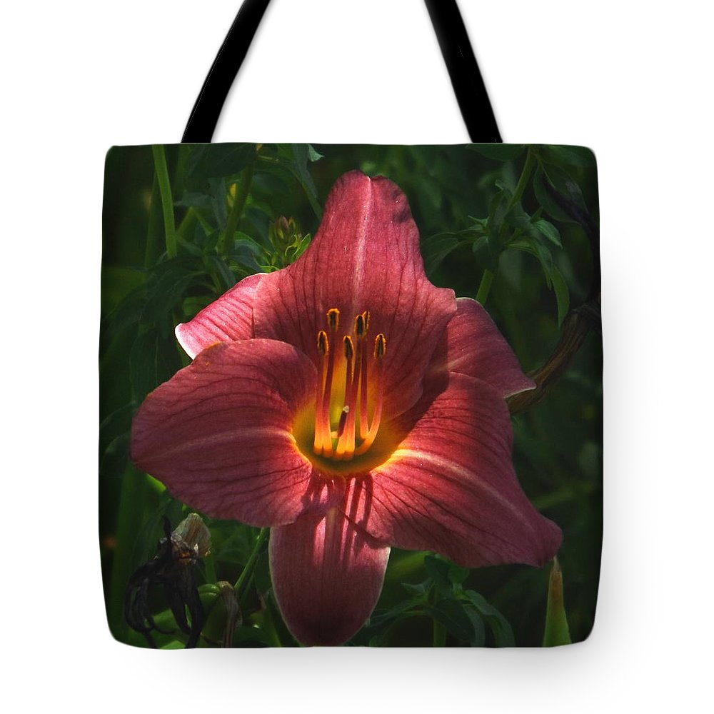 Flower Tote Bag featuring the photograph Illumination by Lorna Hooper