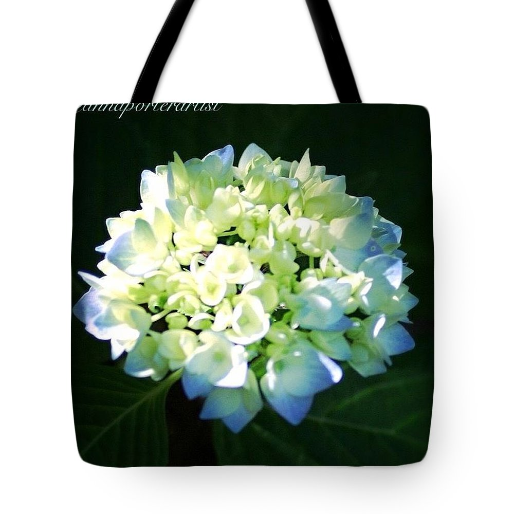 Blue Tote Bag featuring the photograph Illumination by Anna Porter