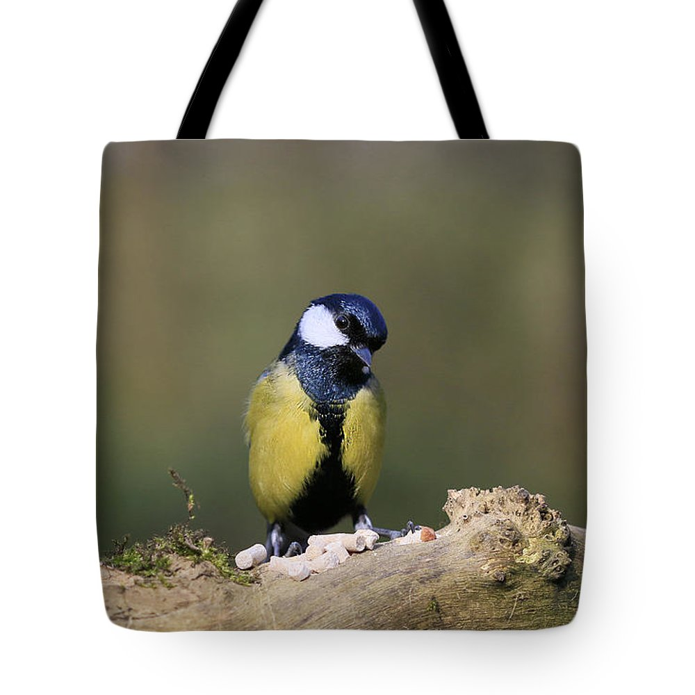 Bird Tote Bag featuring the photograph I'm A Shy Bird by Peter McHallam