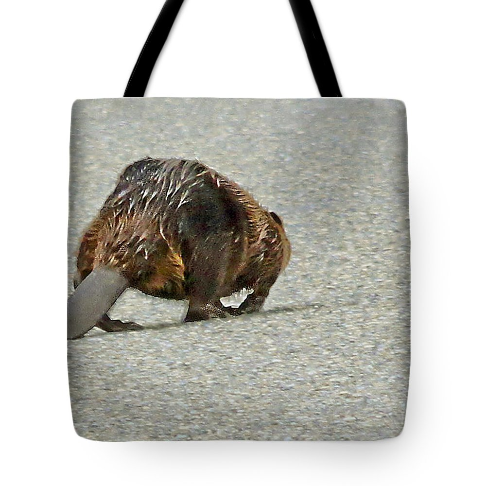 Beaver Tote Bag featuring the photograph Im Outta Here by David Kehrli