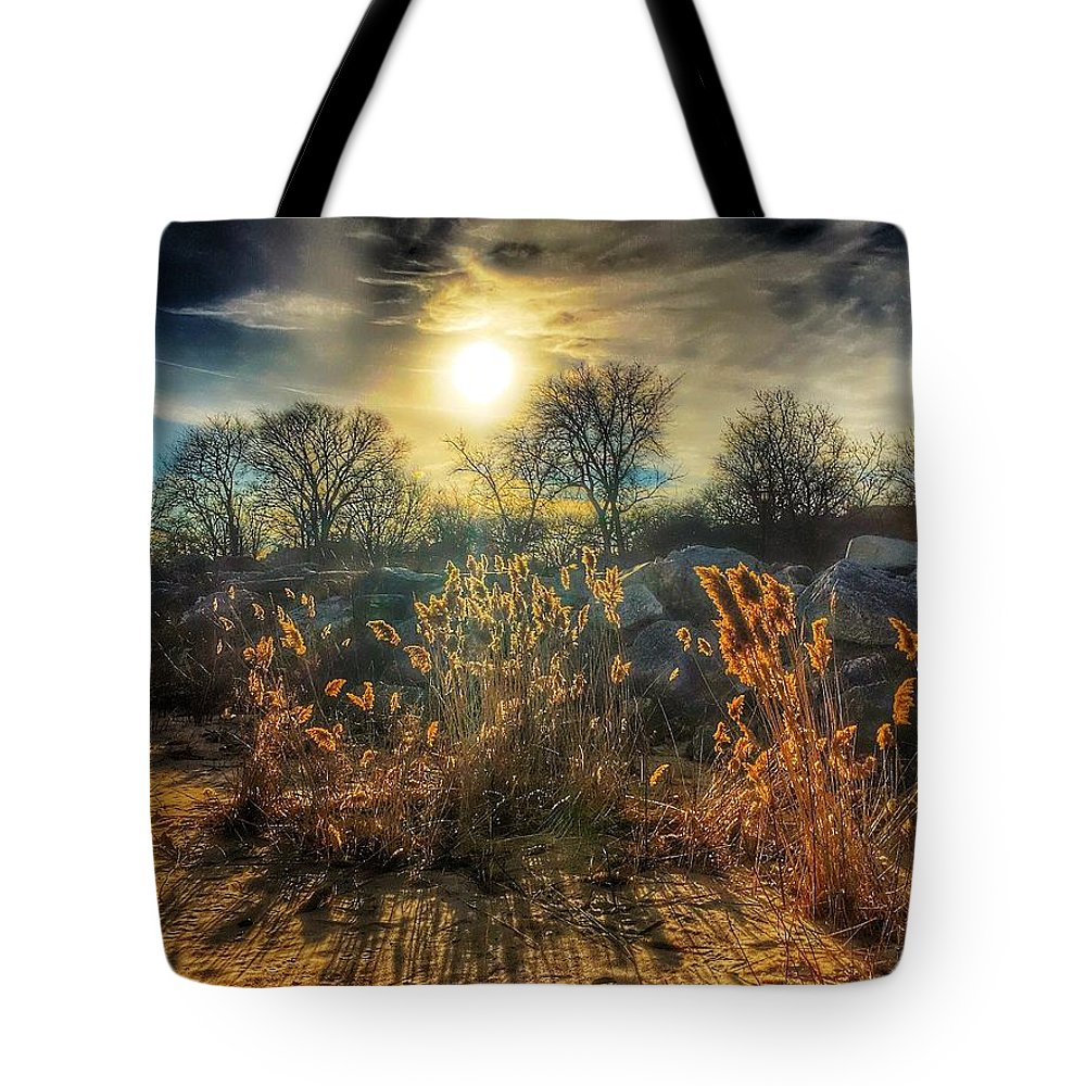 Trees Tote Bag featuring the photograph Crispy Wheat by Louis Perlia