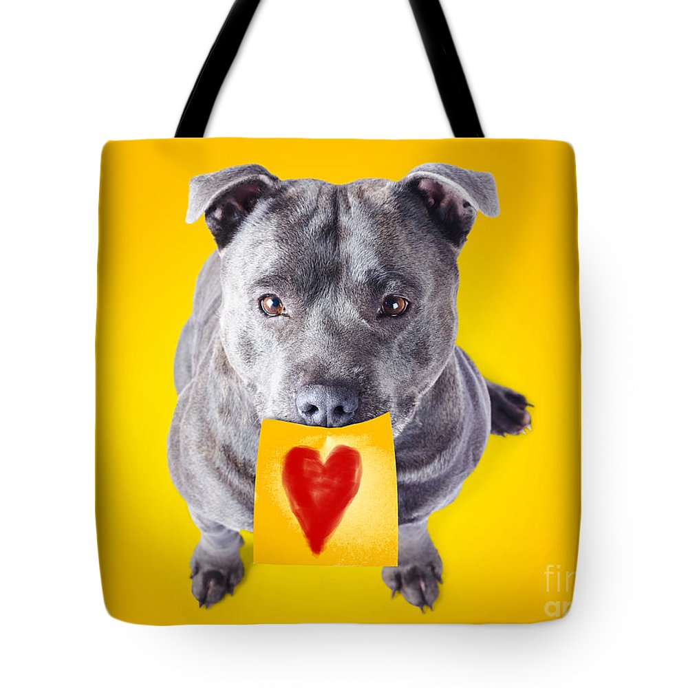 Animal Tote Bag featuring the photograph Imploring Staffie With A Sticky Note On His Mouth by Jorgo Photography - Wall Art Gallery
