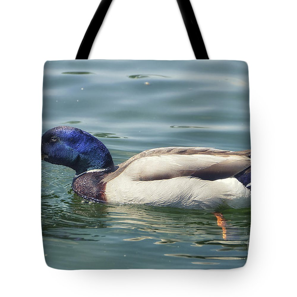 Photo Tote Bag featuring the photograph In A Hurry by Jutta Maria Pusl