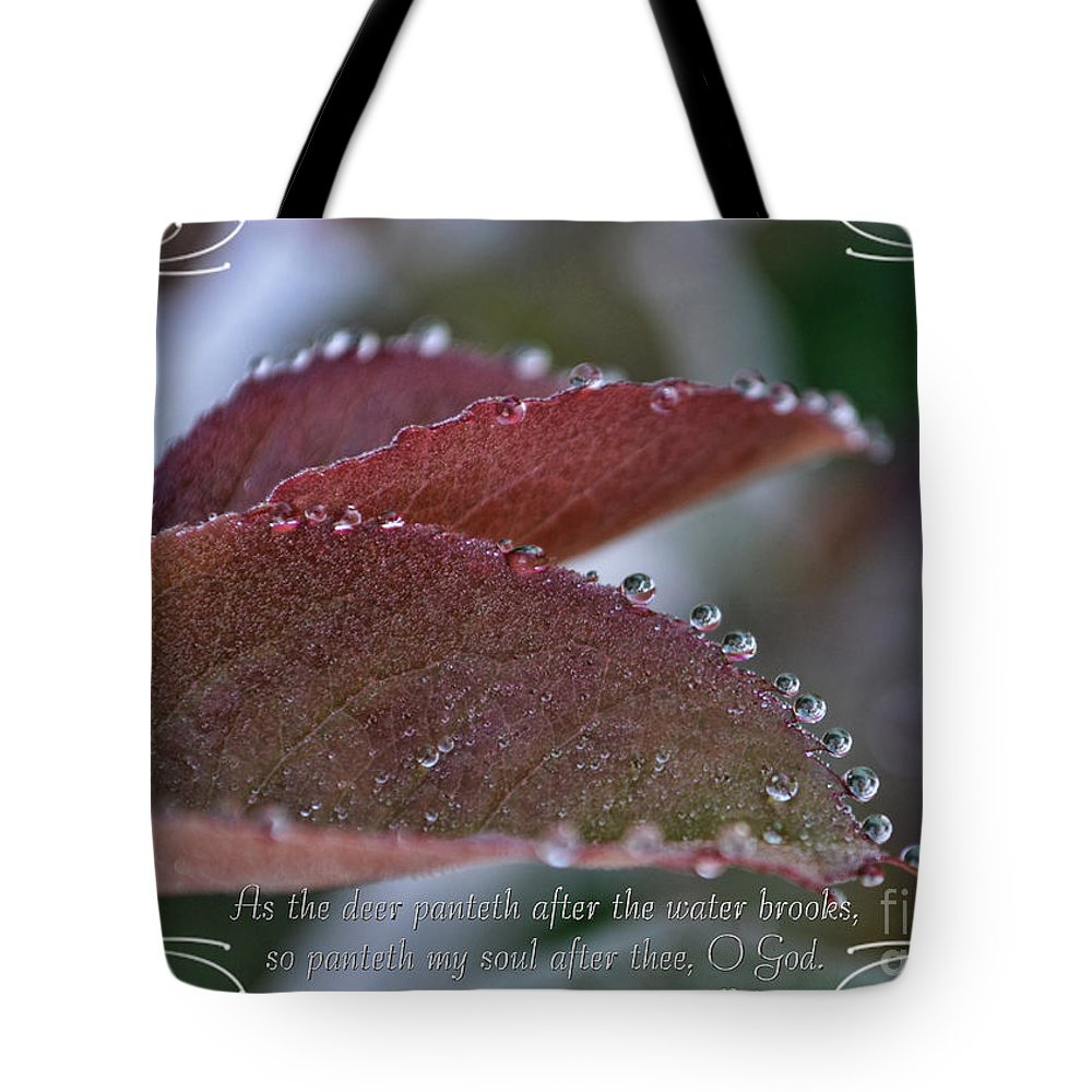 Nature Tote Bag featuring the photograph In A Row With Verse by Debbie Portwood