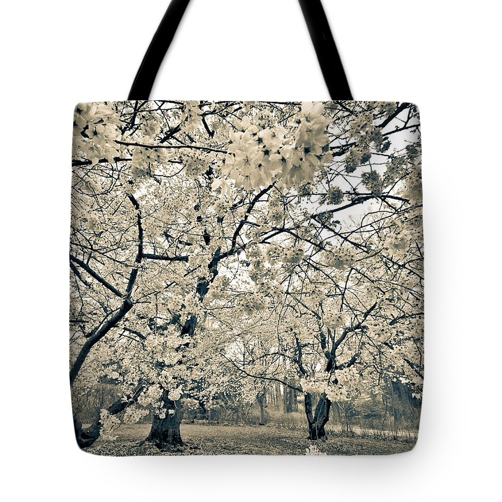 Pennsylvania Tote Bag featuring the photograph In Bloom by Kristopher Schoenleber