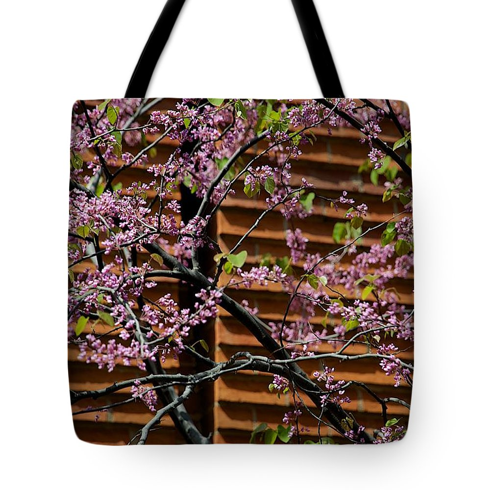 Blooming Tote Bag featuring the photograph In Contrast by Joseph Yarbrough