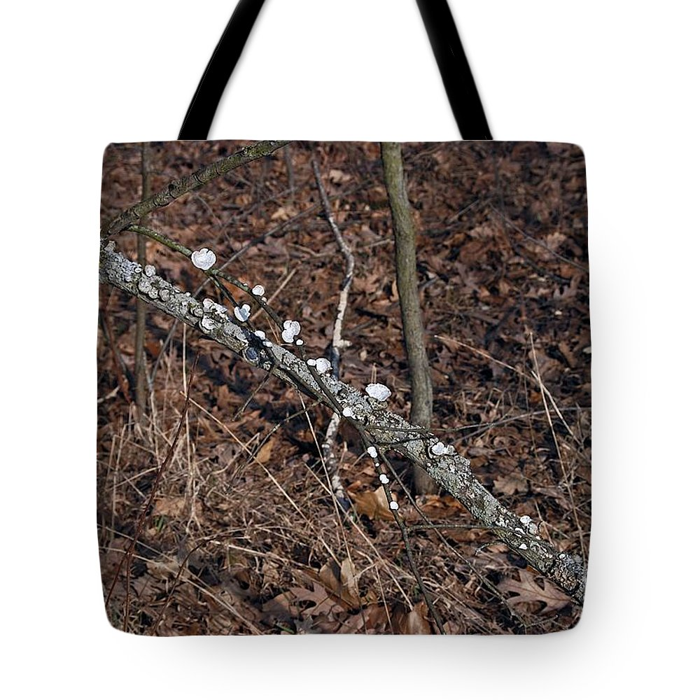 Forest Floor Tote Bag featuring the photograph In-line by Joseph Yarbrough