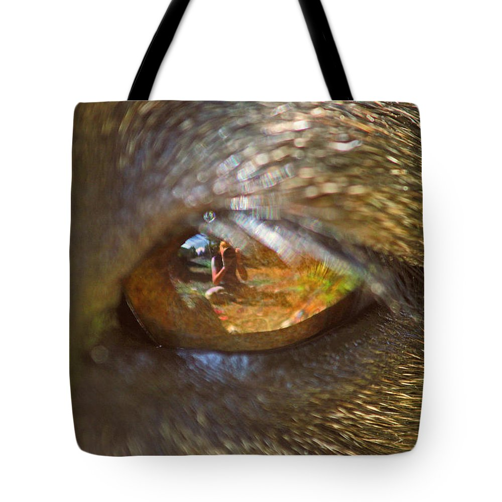 Dogs Tote Bag featuring the photograph In My Dog's Eyes I'm Everything by Peggy Collins