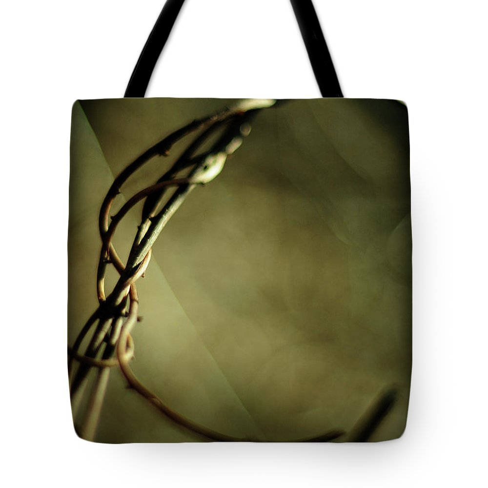 Vines Tote Bag featuring the photograph In Shadows And Light by Rebecca Sherman