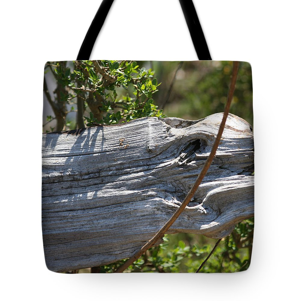 Nature Tote Bag featuring the photograph In The Eye Of The Beholder by Lee Hartsell