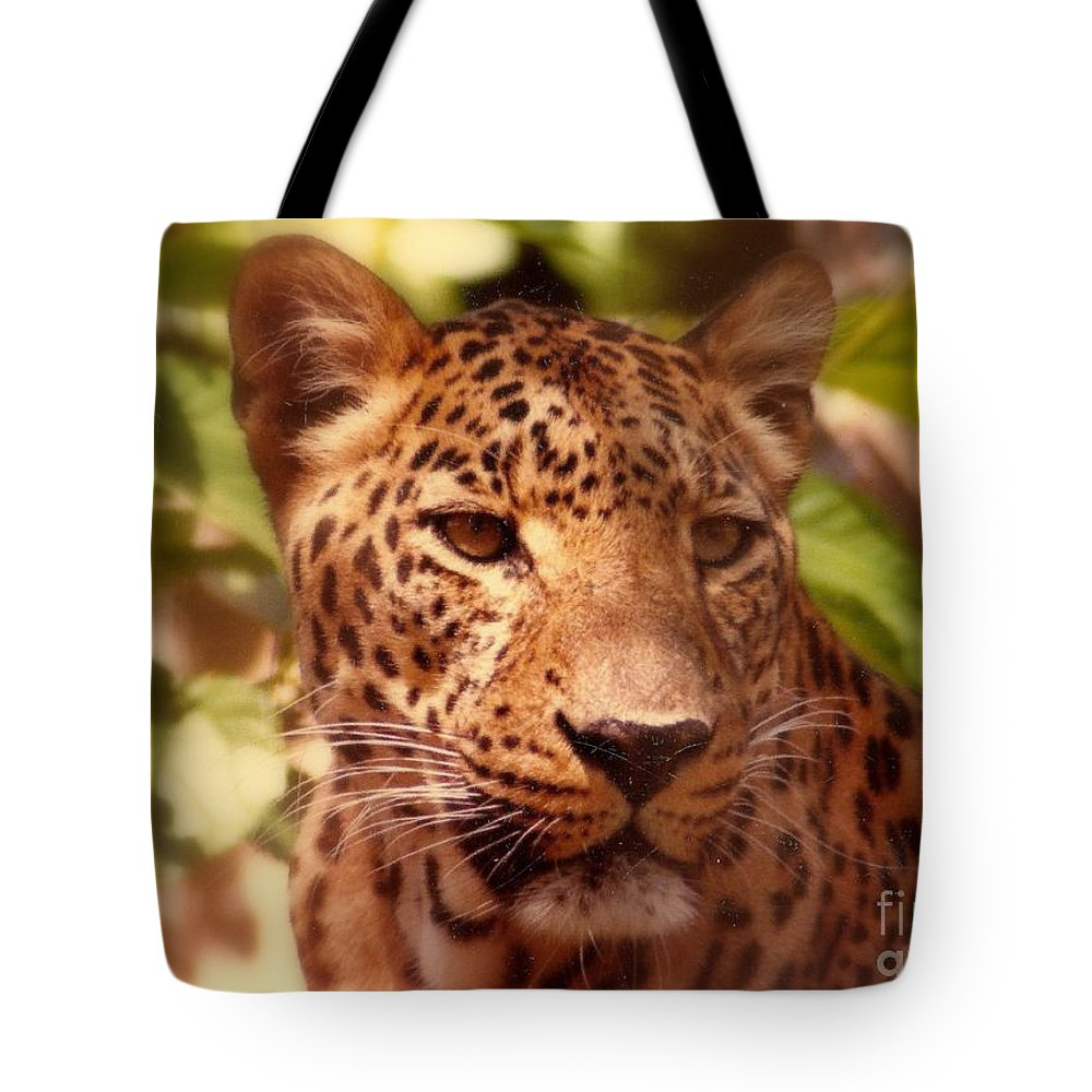 Nola Tote Bag featuring the photograph New Orleans In The Eyes Of The Leopard by Michael Hoard