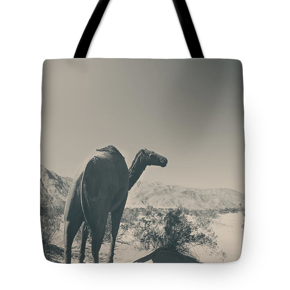 Borrego Springs Tote Bag featuring the photograph In The Hot Desert Sun by Laurie Search