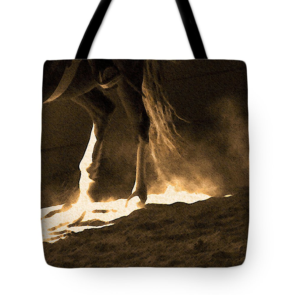 Horse Tote Bag featuring the photograph In The Practice Ring by Theresa Tahara