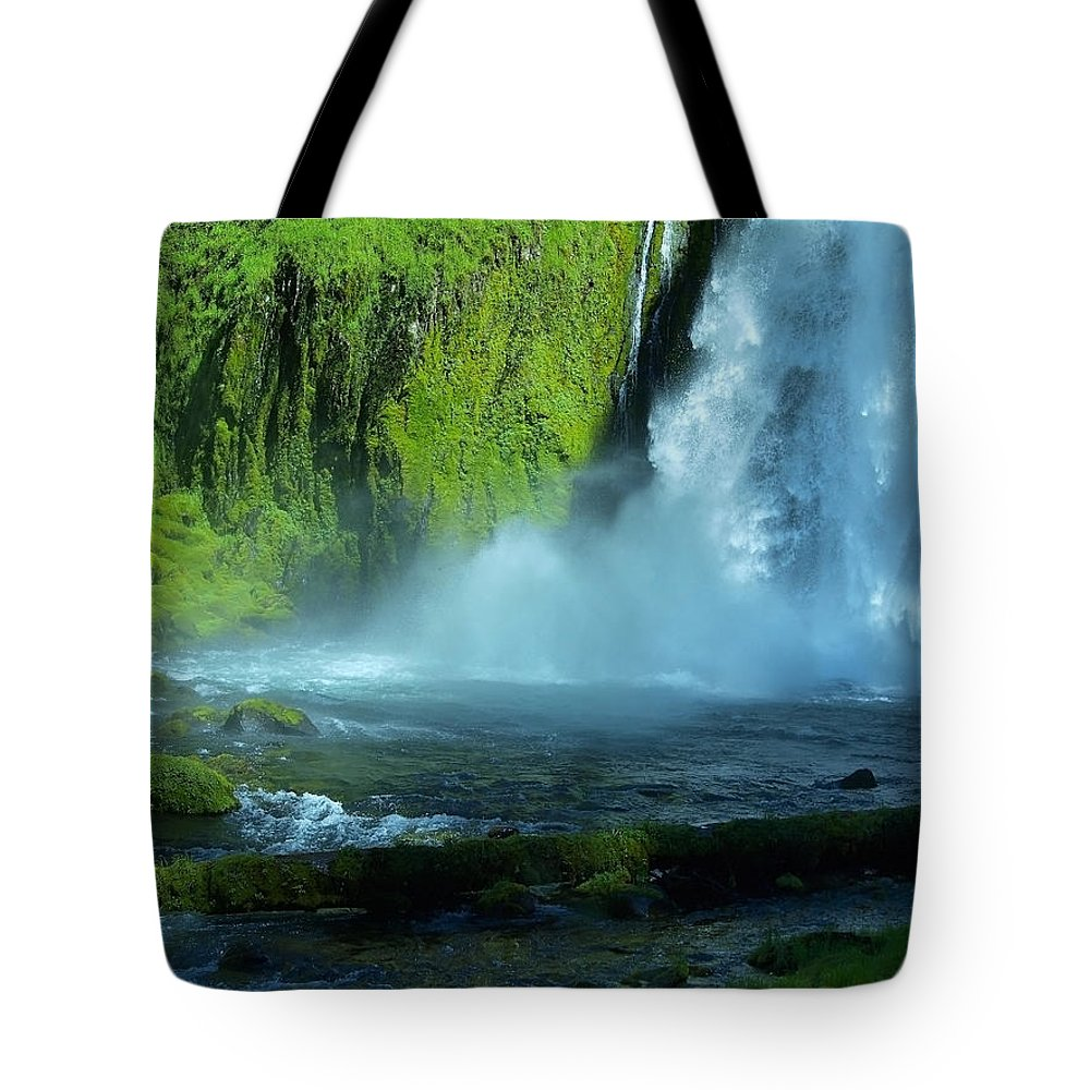 Water Tote Bag featuring the photograph In The Shadow by Teri Schuster