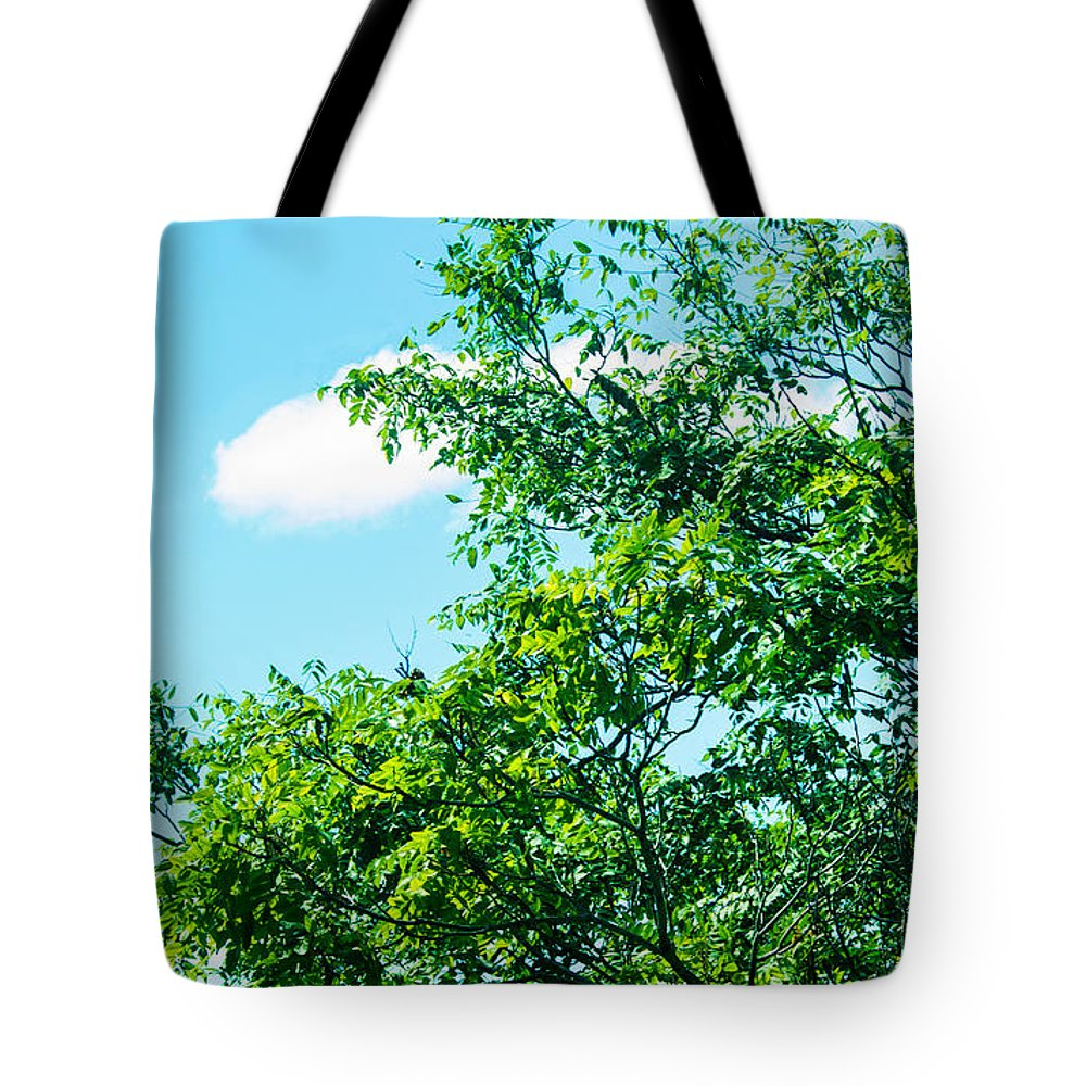 Landscape- Tree Tote Bag featuring the photograph In Touch by Theresa Cummings