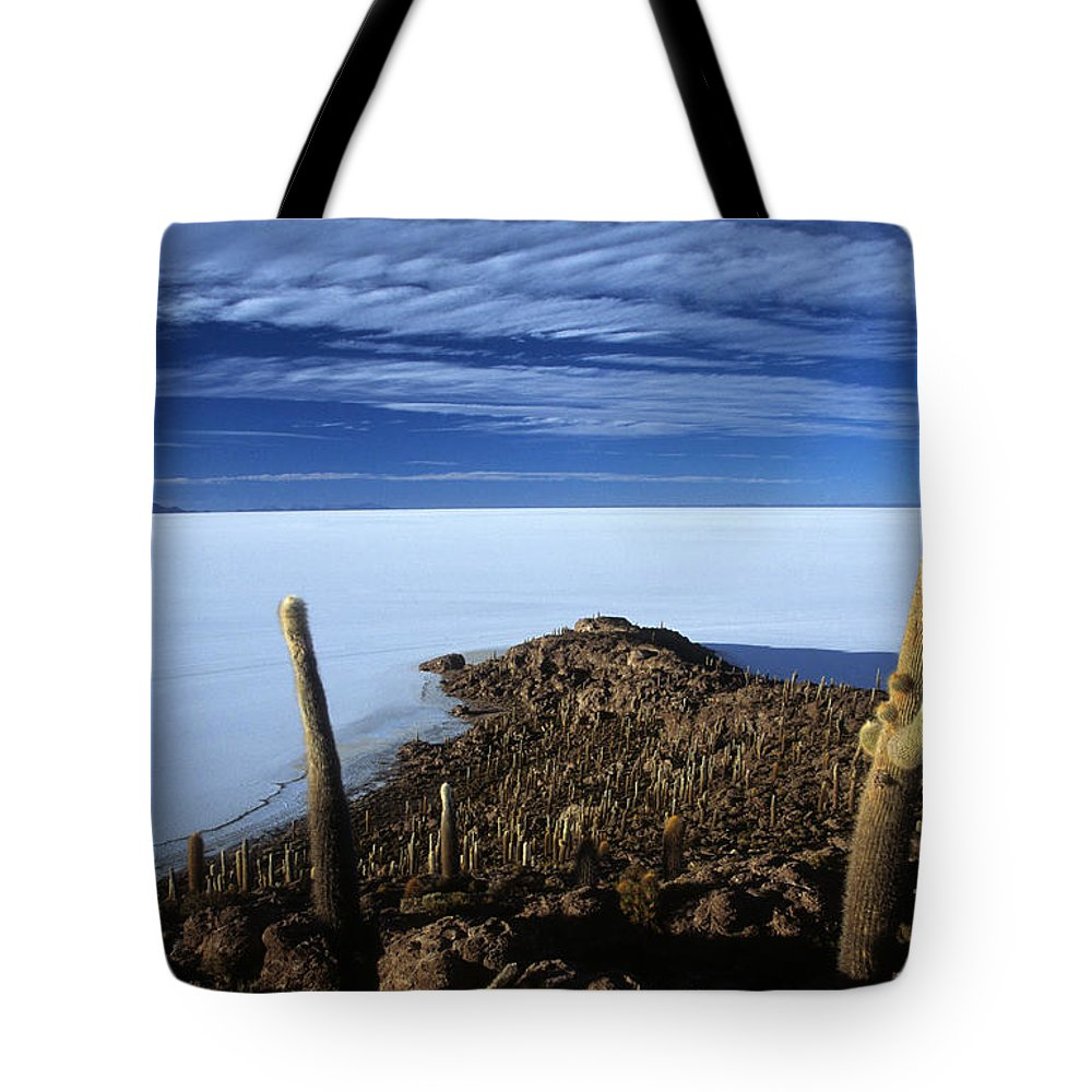 Bolivia Tote Bag featuring the photograph Incahuasi Island And Salar De Uyuni by James Brunker