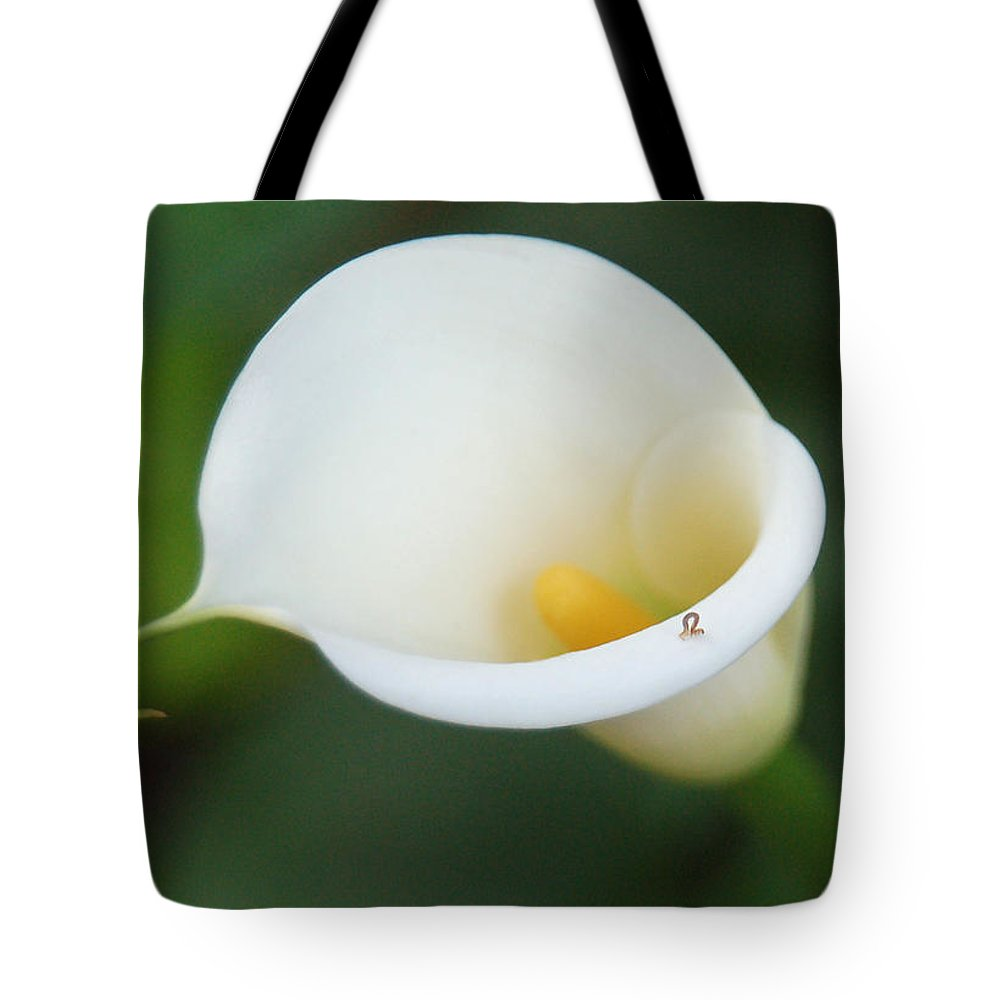 White Calla Lily Tote Bag featuring the photograph Inching Along by Suzanne Gaff