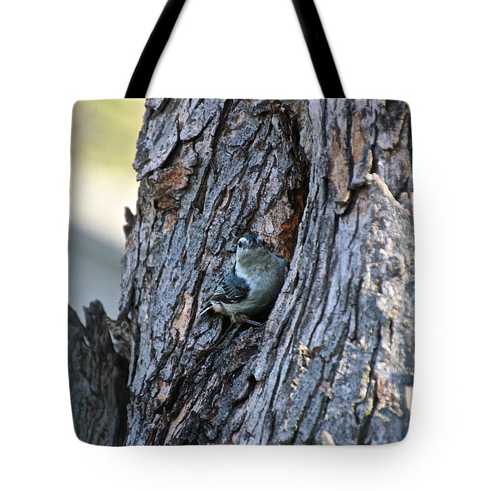 Outdoors Tote Bag featuring the photograph Incognito by Susan Herber