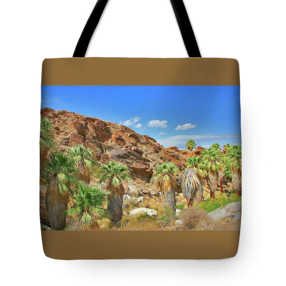 Landscape Tote Bag featuring the photograph Indian Canyons View In Palm Springs by Ben and Raisa Gertsberg