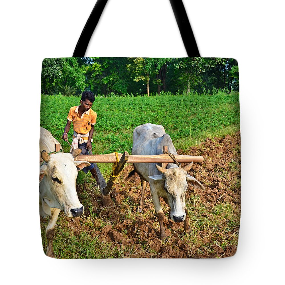 Indian Tote Bag featuring the photograph Indian Farmer Plowing With Bulls by Image World