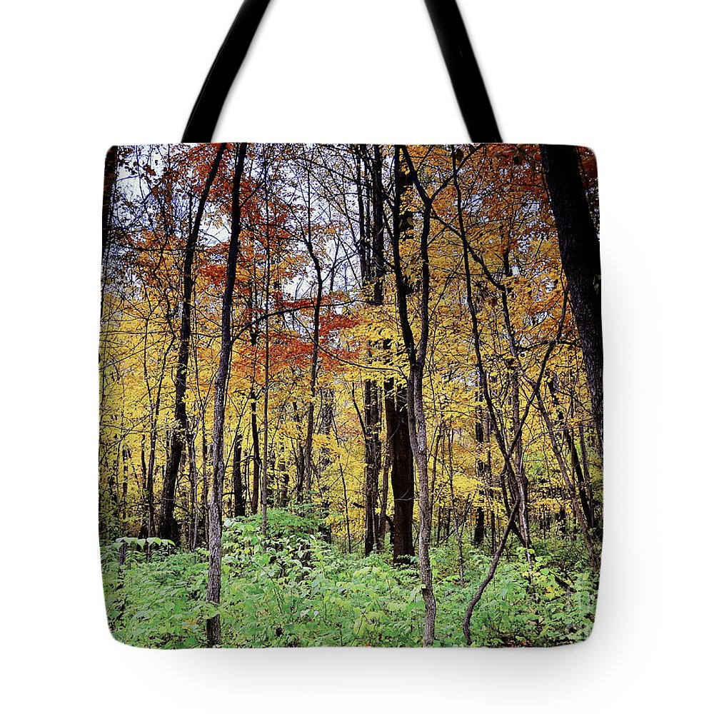 Cool Creek Tote Bag featuring the photograph Infared Fall In Indiana by Amy Lucid